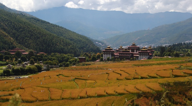 Climate and Seasons in Bhutan, Rice Field in Thimphu, Bhutan in Autumn