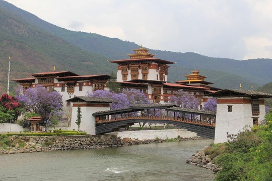 The Punakha Dzong/Fortress in Bhutan